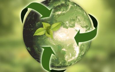 Economia Circolare: Modelli di Business e Sviluppo Sostenibile