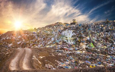 Servizi di Igiene Urbana: Buone Prassi, Gestione dei Servizi ed Inquadramento Giuridico
